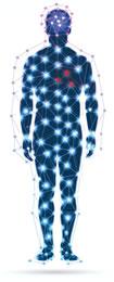 terapia vascular fisica