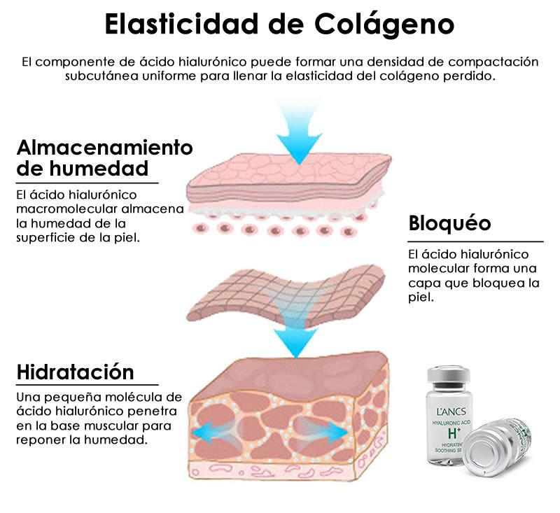 elasticidad de colageno
