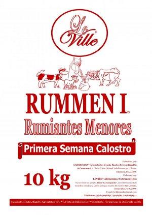 RUMMEN I