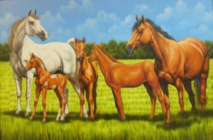 Rodrigo Beltran-5 caballos