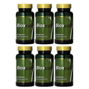 Bioxcell Pack x 6
